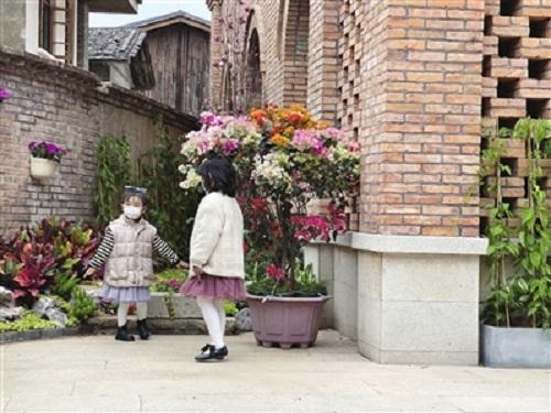 福州市區4.3公里花帶盛放