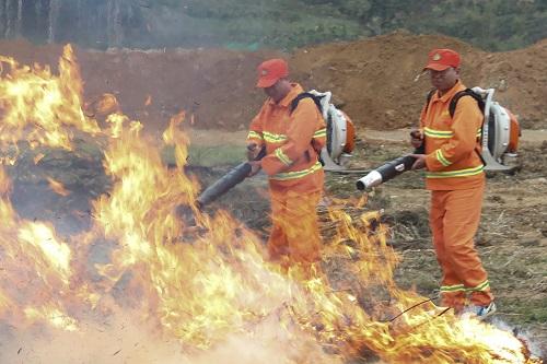 倉山區開展2021年森林防滅火培訓演練